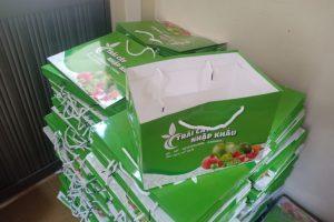 Địa chỉ mua Túi Đựng Hoa Quả, Trái Cây bán sẵn Siêu rẻ !